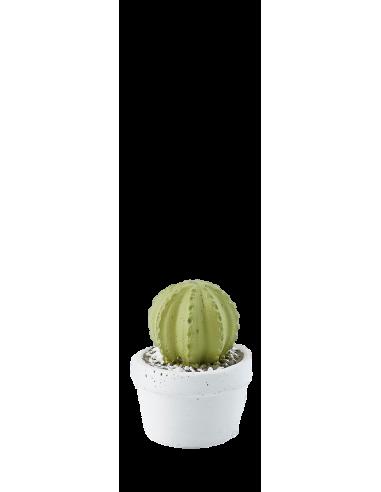 Cactus mini in cemento - Verde chiaro