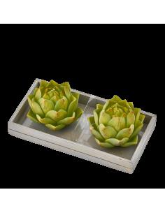 Set 2 candele cactus